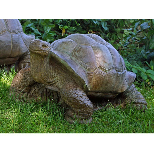 Turtle Concrete Outdoor Garden Statue Turtle Henri Studio