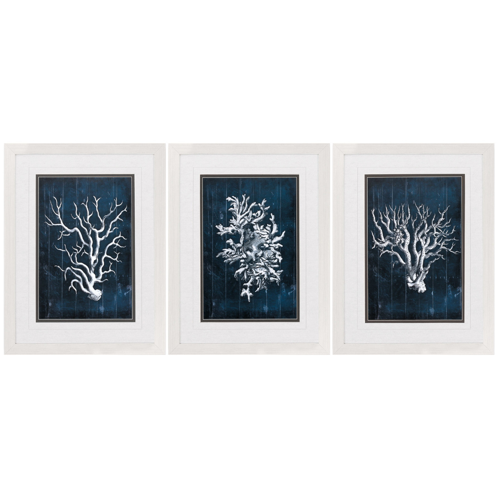 Navy blue coral framed prints set of 3 jeuxipadfo Gallery
