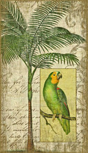 Green Parrot and Palm Island Art