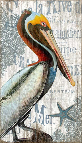 Coastal Pelican Custom Art