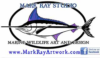 mark-ray-studio.jpg