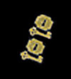 CAT T20 - Campaign Escutcheons w/Keys - 2 sets