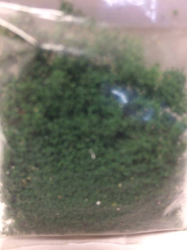 Dollhouse Miniature - 4546 - Foliage - Green - 2 g