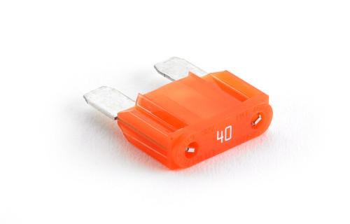 JL Audio XD-MAXI-40:40 A Maxi™ Fuse