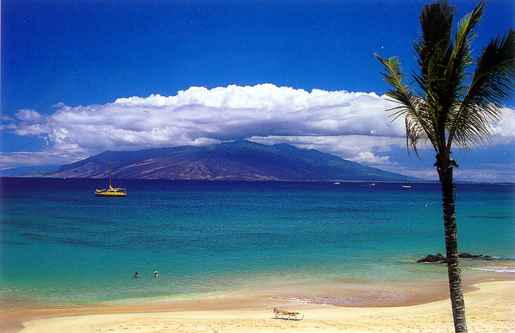 P367 - Makena Postcard 50 Pack