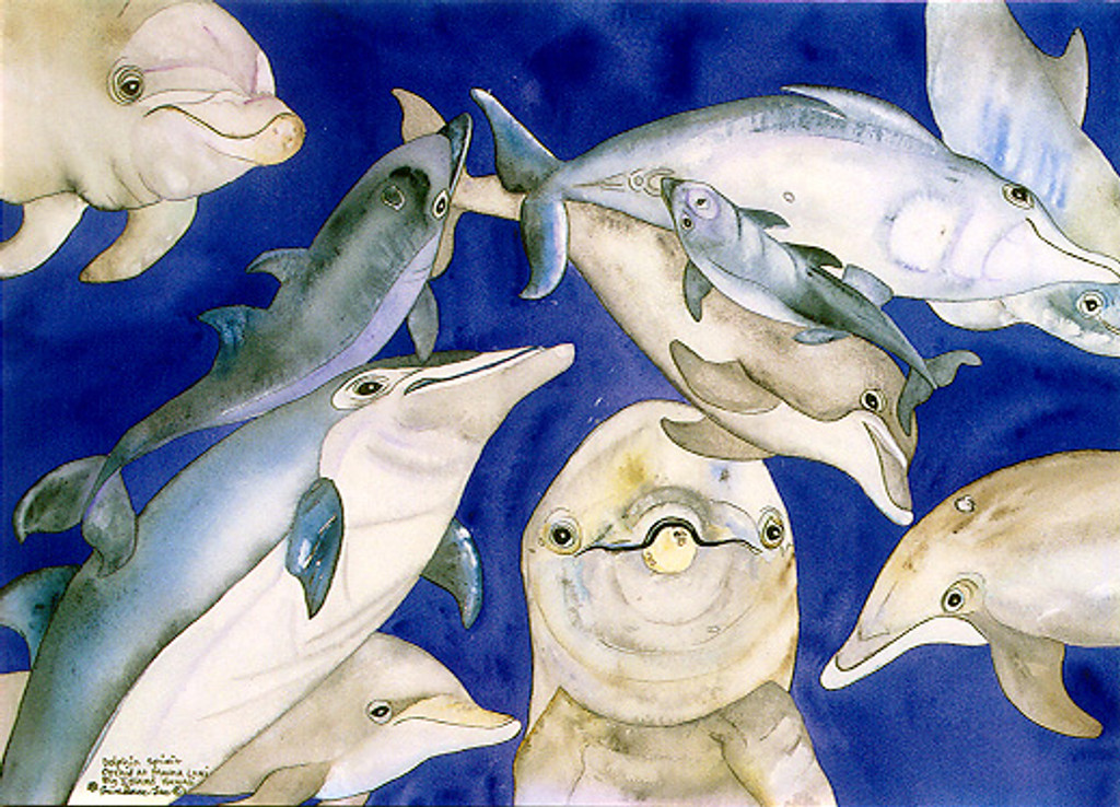 Dolphin Spirit - Notecard 6 Pack