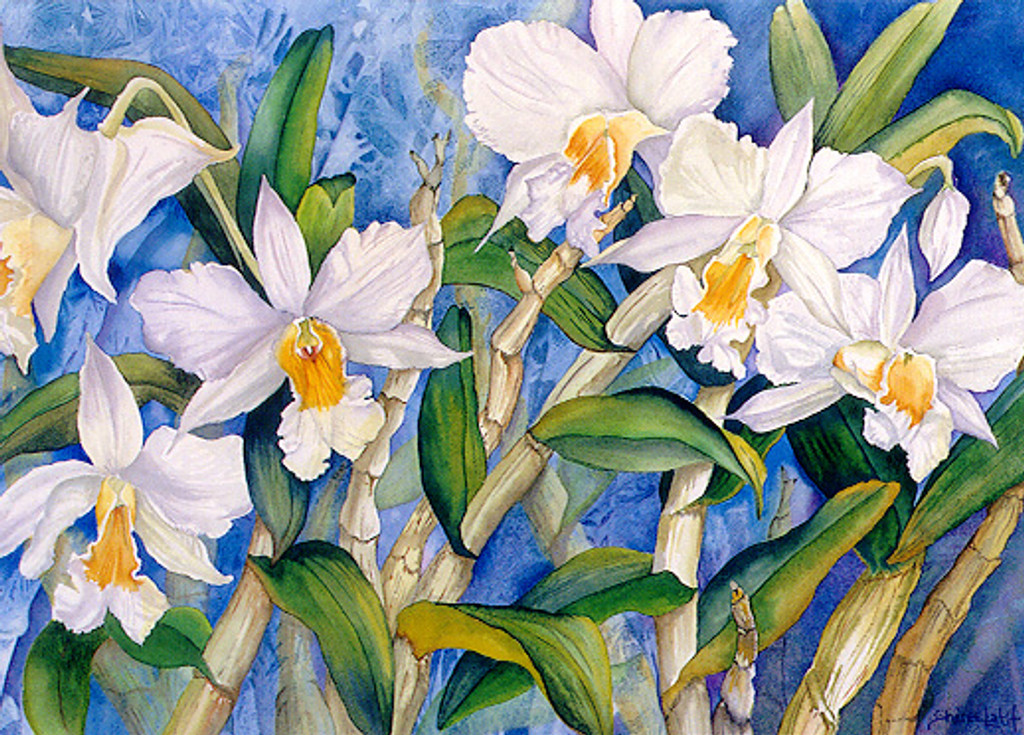 Twilit Orchids - Notecard 6 Pack