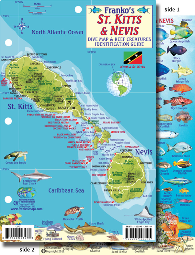 St. Kitts and Nevis Reef Creatures Card