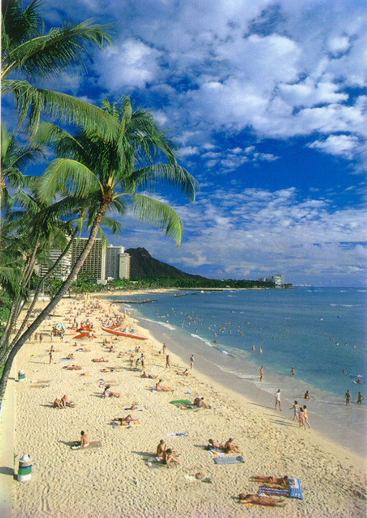 P238 - Waikiki Beach Postcard 50 Pack