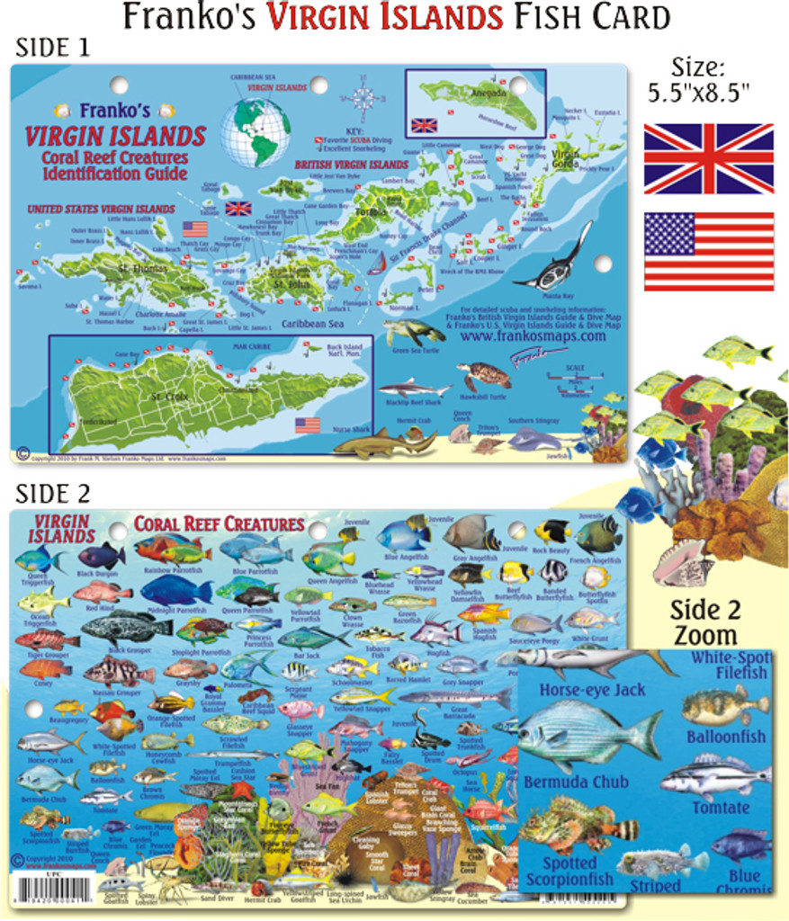 Virgin Islands Fish ID Card