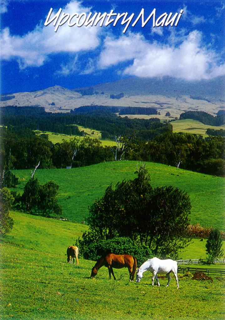 P340 - Upcountry Postcard 50 Pack