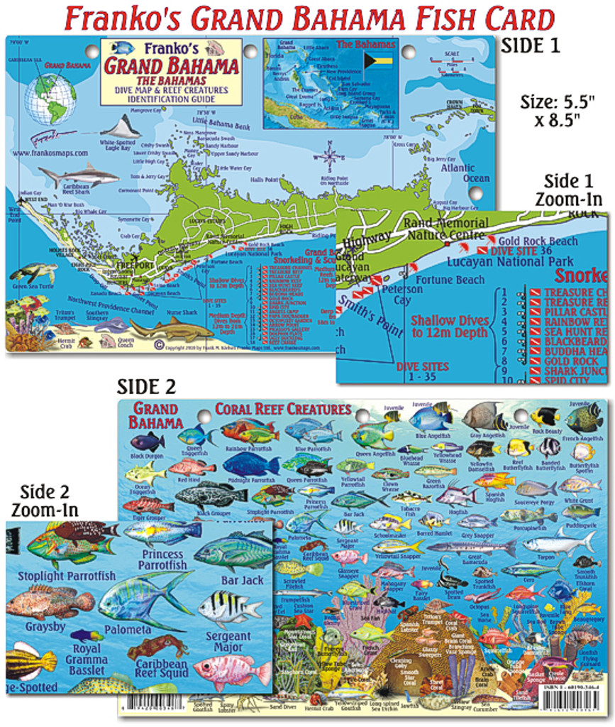 Grand Bahamas Fish Card