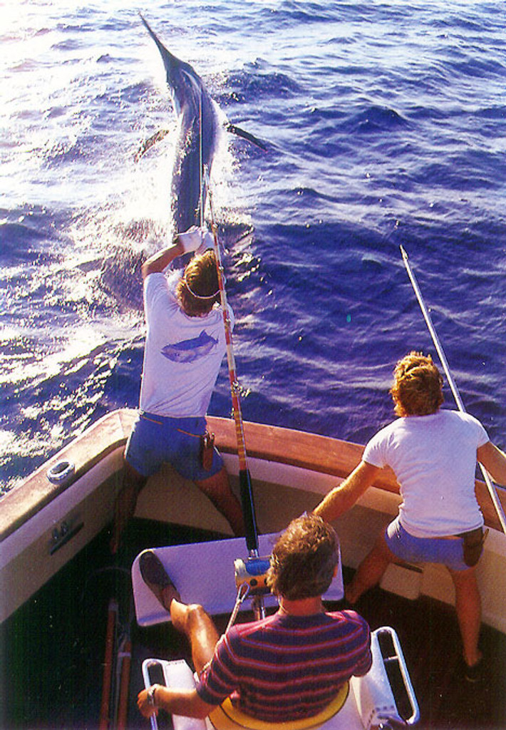 P427 - Sportfishing Kona Postcard 50 Pack