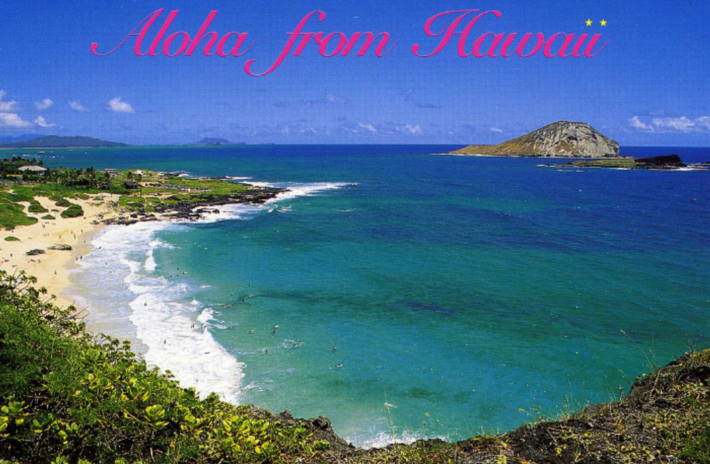P824 - Makapuu Beach Postcard 50 Pack