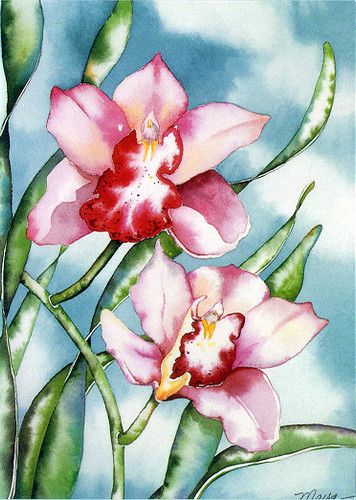 Orchids - Notecard 6 Pack