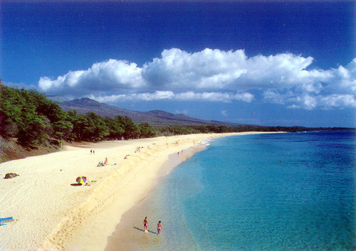 P342 - Makena Beach Postcard 50 Pack