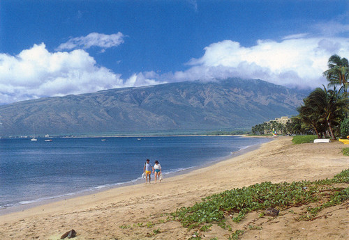 P344 - Kihei Beach Postcard 50 Pack
