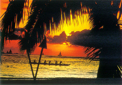 P225 - Waikiki Sunset Postcard 50 Pack
