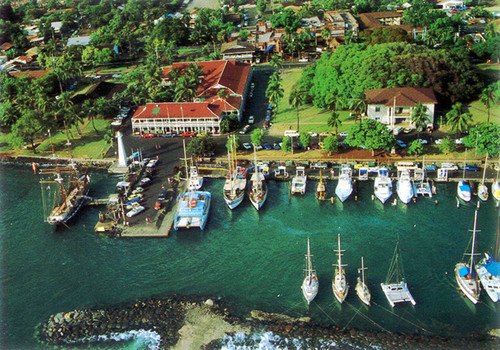 P305 - Lahaina Harbor Postcard 50 Pack