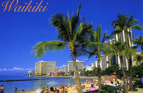P707 - Waikiki - Near Zoo Postcard 50 Pack