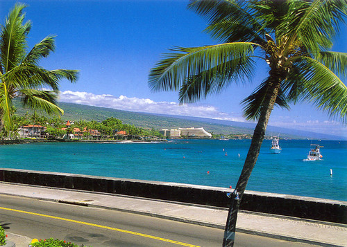 P493 - Kona Coastline Postcard 50 Pack
