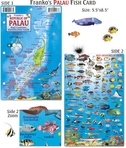 Palau Fish Card