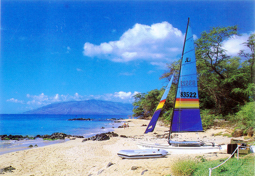 P314 - Wailea Beach Postcard 50 Pack