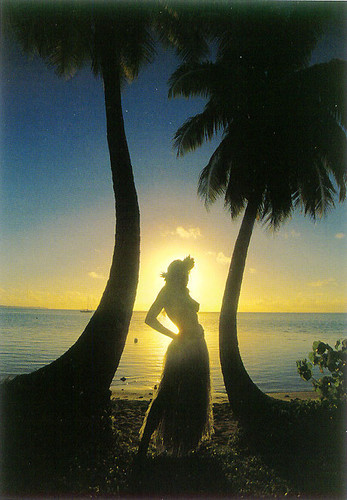 P061 - Sunset Silhouette Postcard 50 Pack