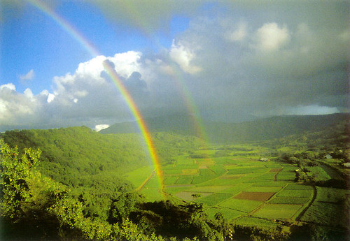 P571 - Double Rainbow Hanalei Postcard 50 Pack