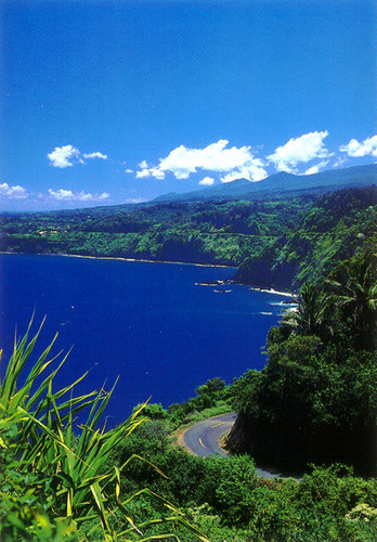 P316 - Road to Hana Postcard 50 Pack