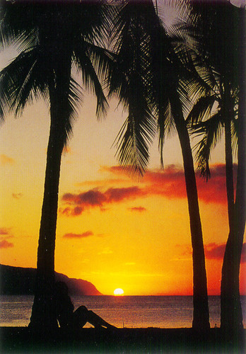P030 - Idyllic Sunset Postcard 50 Pack
