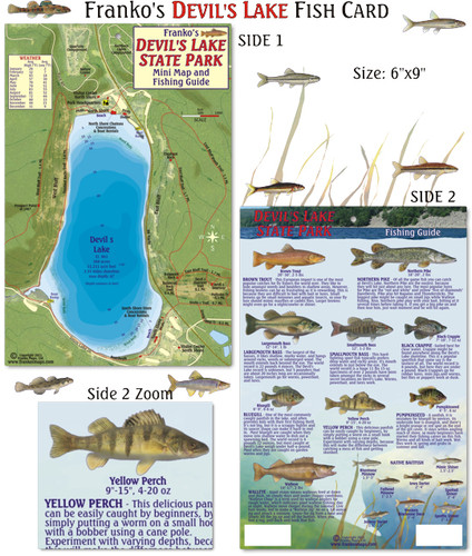 Devil's Lake State Park Fish Card