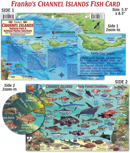 Channel Islands Mini Map & Kelp Forest Creatures (fish card)