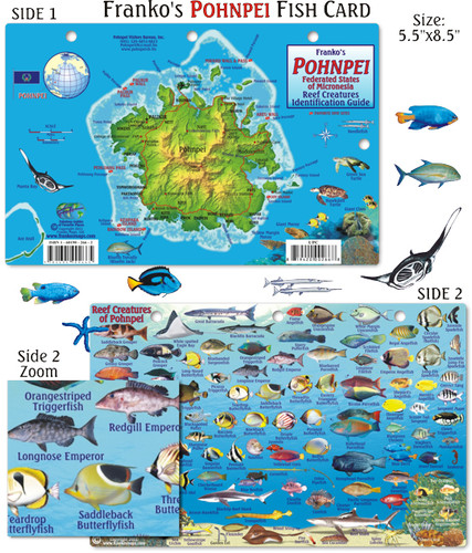 Pohnpei Reef Creatures Identification Guide (Fish Card)
