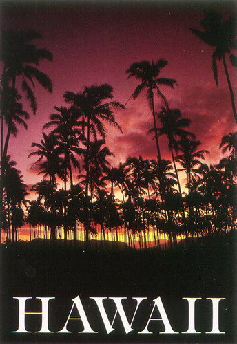 P263 - Sunset Postcard 50 Pack