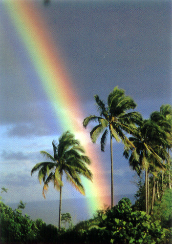 P256 - Rainbow Postcard 50 Pack