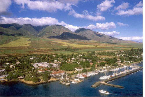 P376 - Lahaina Harbor and Town Postcard 50 Pack