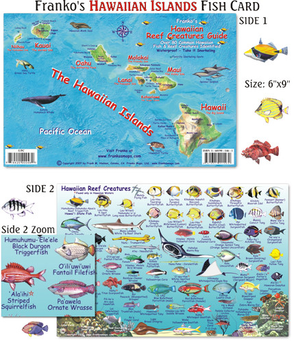 Hawaiian Island Chain Fish ID Card