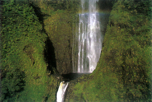 P472 - Waterfall Postcard 50 Pack