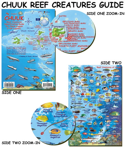 Truk Lagoon Fish Card