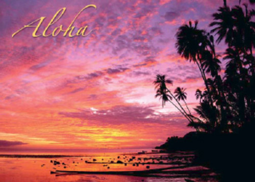 Red Sunset 5x7 Postcard 25 Pack