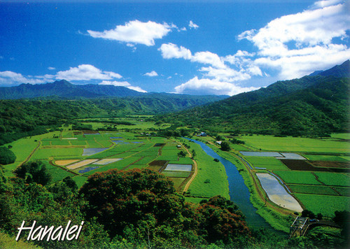 P510 - Hanalei Valley Postcard 50 Pack
