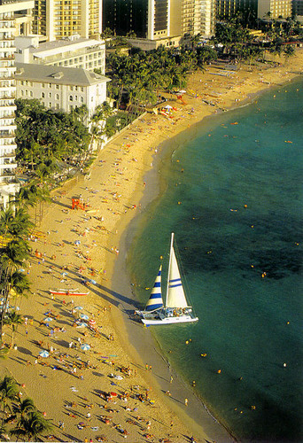 P056 - Waikiki Beach Postcard 50 Pack