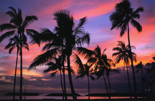 P825 - Sunset - Magic Island Postcard 50 Pack