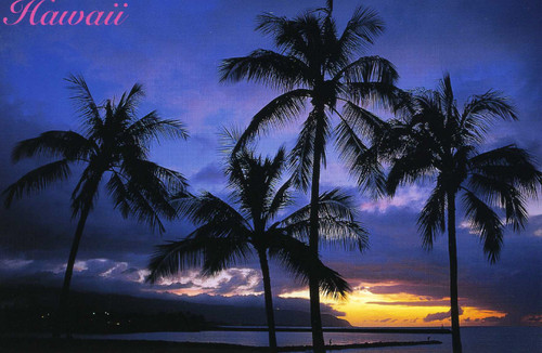 P820 - North Shore - Blue Sunset Postcard 50 Pack