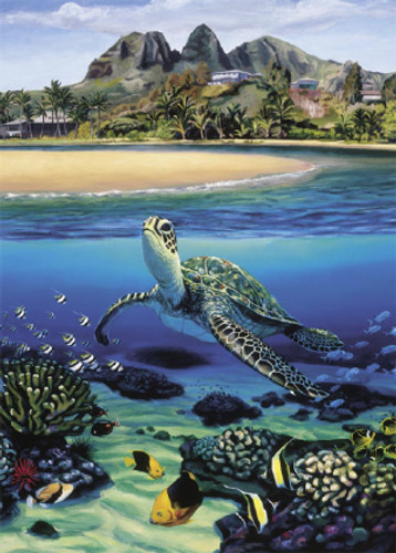 Honu at Anahola - Notecard 6 Pack