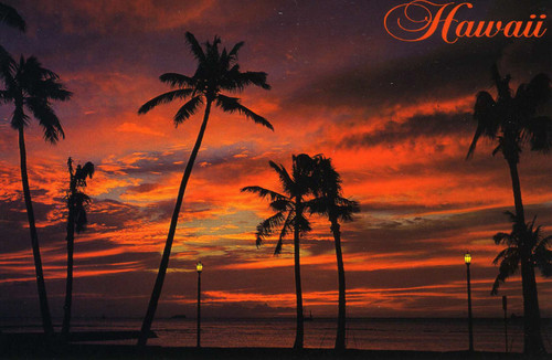 P803 - Sunset - Red Postcard 50 Pack