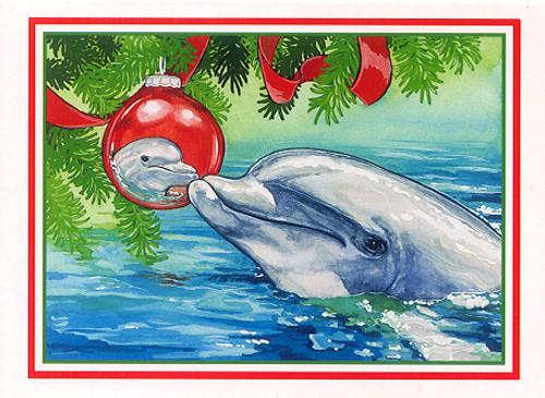 Christmas Cards - Coral Cards - C0503 / Dolphin Reflection / 10 cards per box