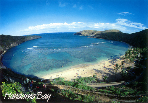 P211 - Hanauma Bay Postcard 50 Pack