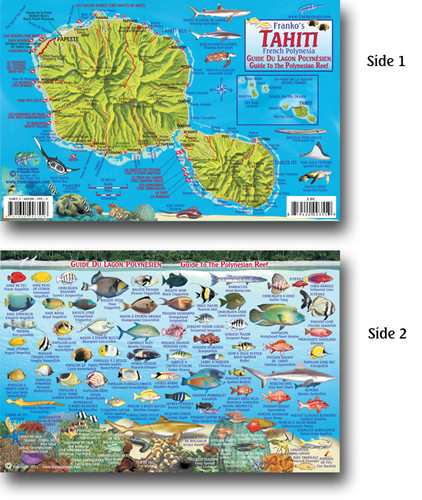 Tahiti Main Island Fish Card